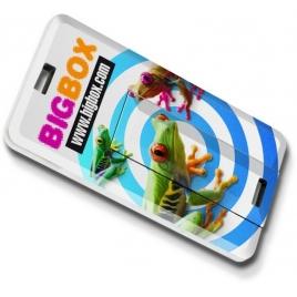 Mini carte USB platinium