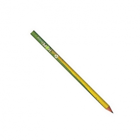 BIC®  Evolution® Digital Cut Ecolutions® crayon