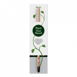 Sprout™ | Crayon dans un emballage individuel