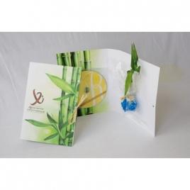 Carte avec CD et bambou