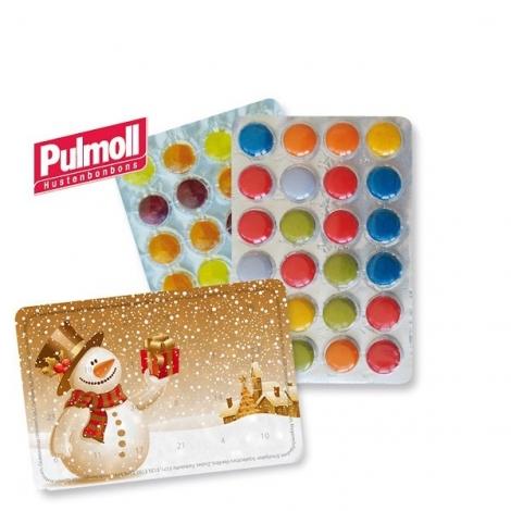 Petit calendrier Pulmoll standard